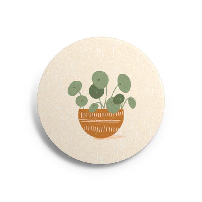 button pannenkoekenplant